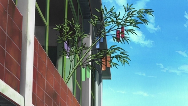 A scene from Haruhi showing a bamboo branch in a window